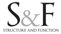 Audio Interview - Sue Falsone - The Shoulder DVD